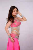 Sneha Ullal Glamorous in Pink Photo shoot-thumbnail-12