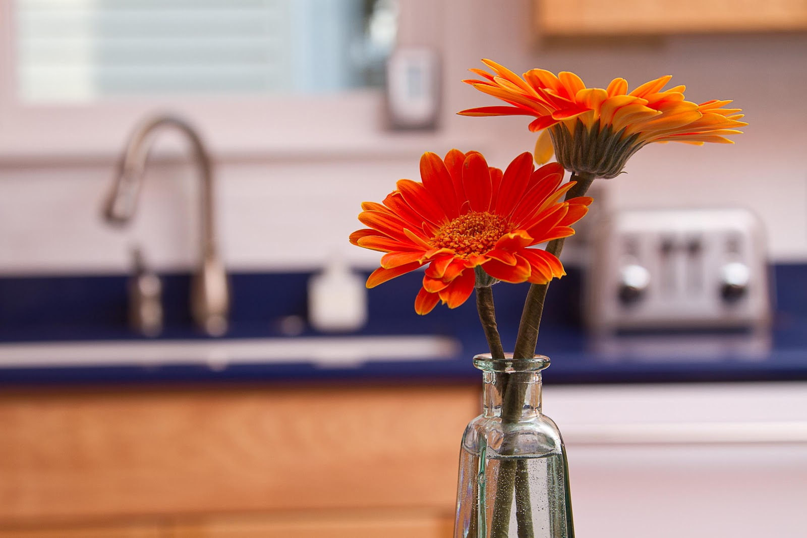 Flowers+in+kitchen