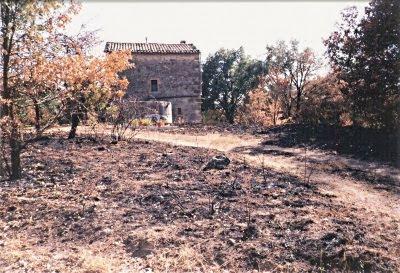 Després del foc (M. Roser Algué Vendrells)