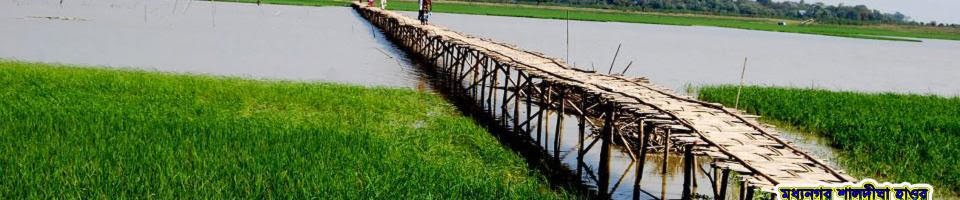 Bambo Bridge