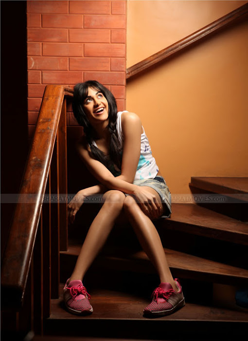 adah sharma stunning shoot photo gallery