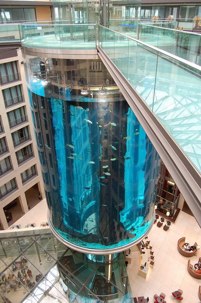 Огромный аквариум Aquadom