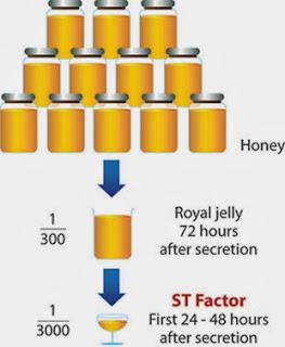 ST Factor longrich