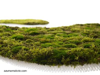 Alfombra de sustrato ecológico con plantas vivas