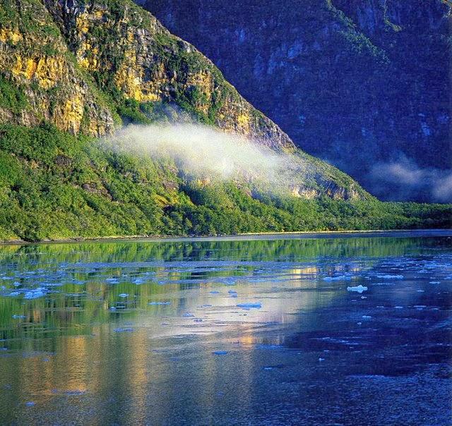 patagonia,chilena, amenaza