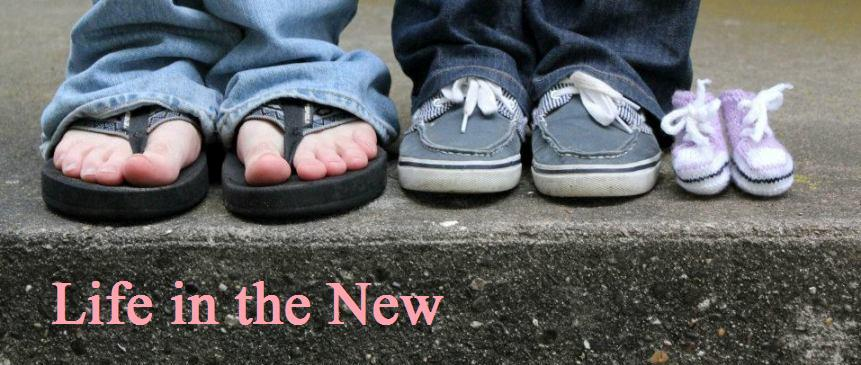Life in the New