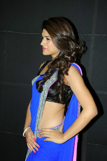 Actress Shraddha Das  Pictures in Saree at Rey A to Z Look Launch 0027.jpg