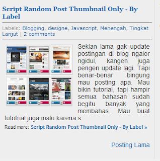 Cara Menampilkan Page Number di Halaman Kategori Post