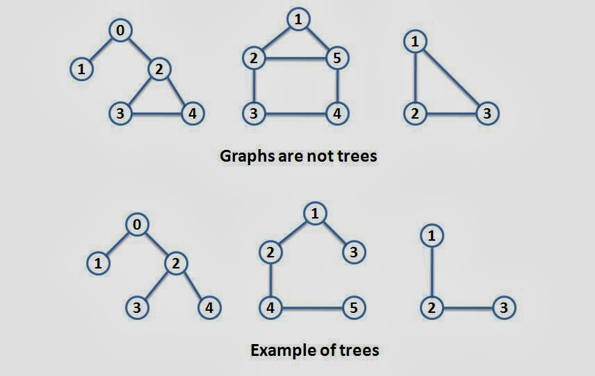 Graphs introduction and terminology the crazy programmer tree aloadofball Images