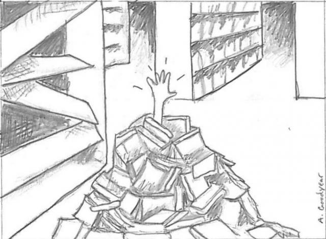 """Résultat de recherche d'images pour """"avalanche livres"""""""