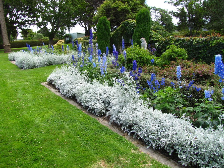blue-hawera-park