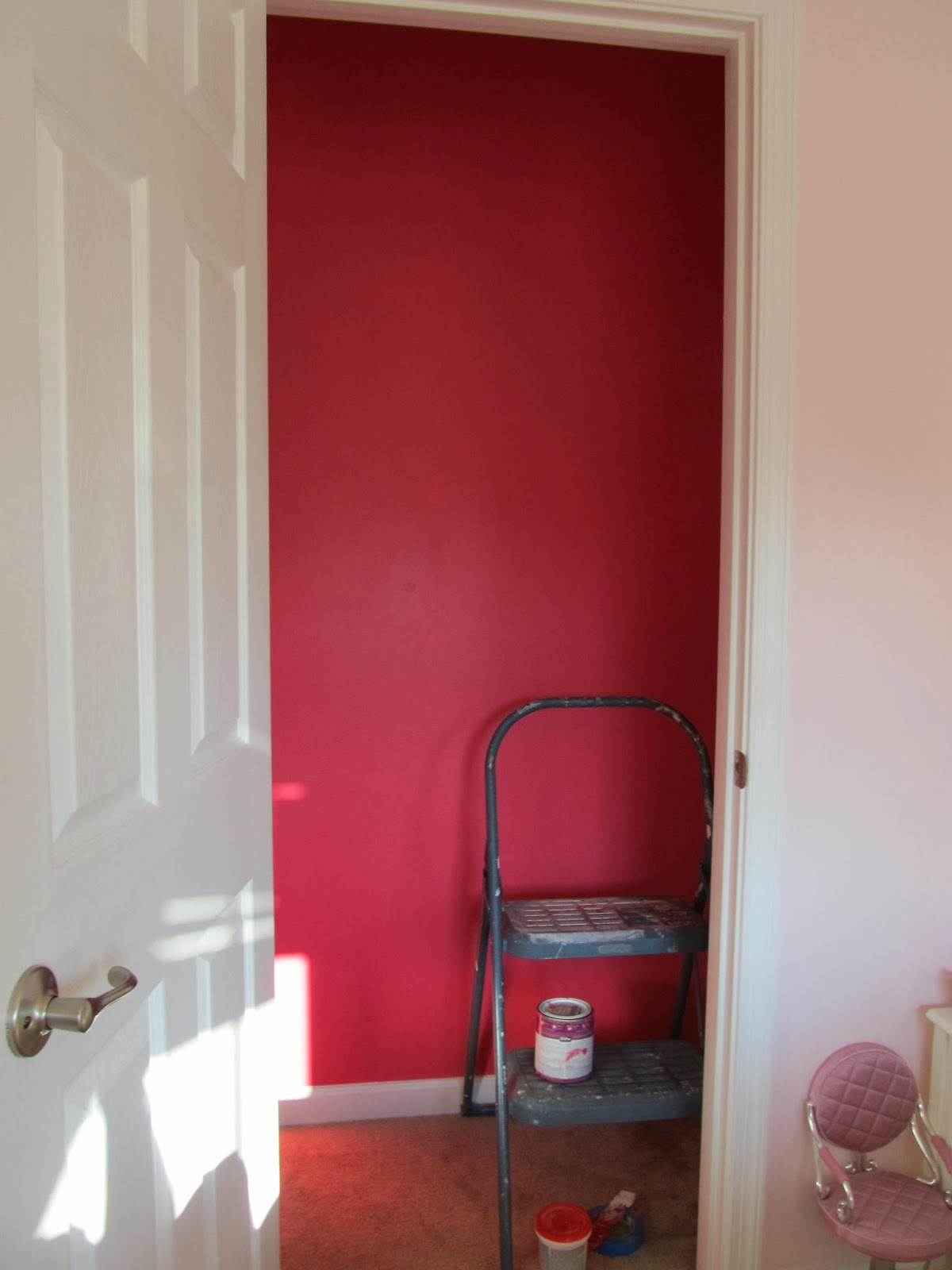 *Note: Save Yourself The Hassle And Only Paint The Back Wall Of The Closet.  Donu0027t Bother With The Sides, And Certainly Not The Inside Wall Which Is  Never ...