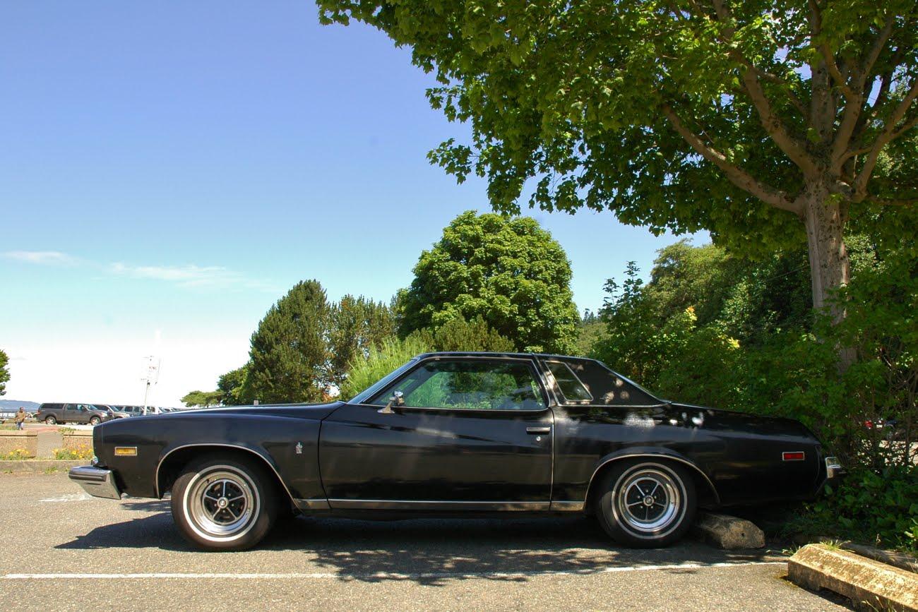 old parked cars 1975 buick regal landau. Black Bedroom Furniture Sets. Home Design Ideas
