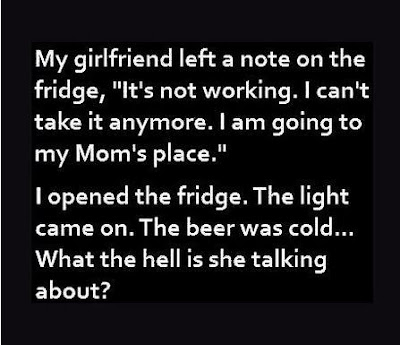 I opened the fridge. The light came on. The beer was cold ...