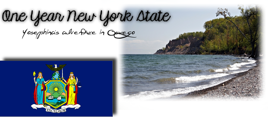 One Year New York State