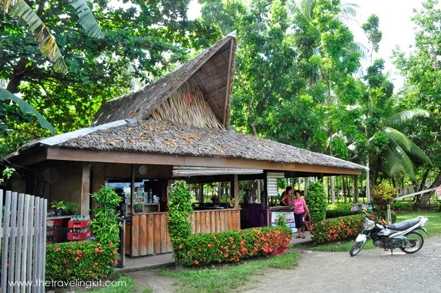 Marihatag Tree Park and Resort