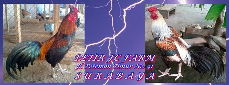 PETIR FC FARM