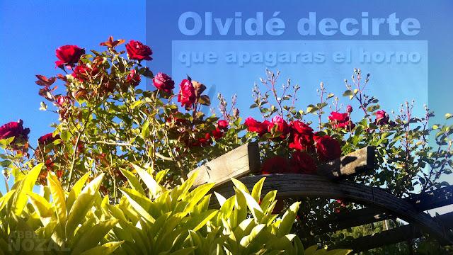 Aniversario de Lorca, 2013 Abbé Nozal