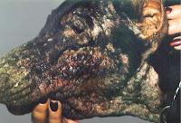 sarna perro - sarna Demodetic