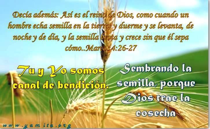 Textos Biblicos De Bendicion