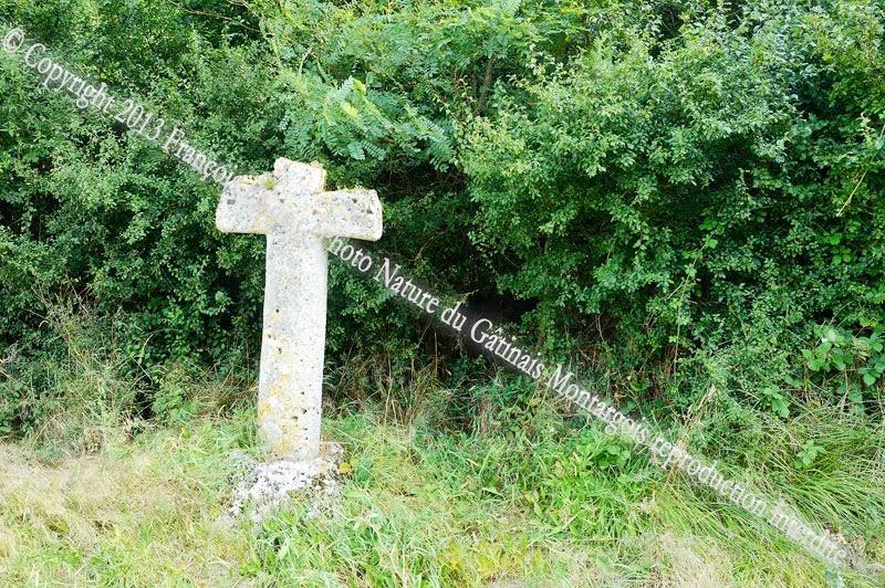 La croix quantine