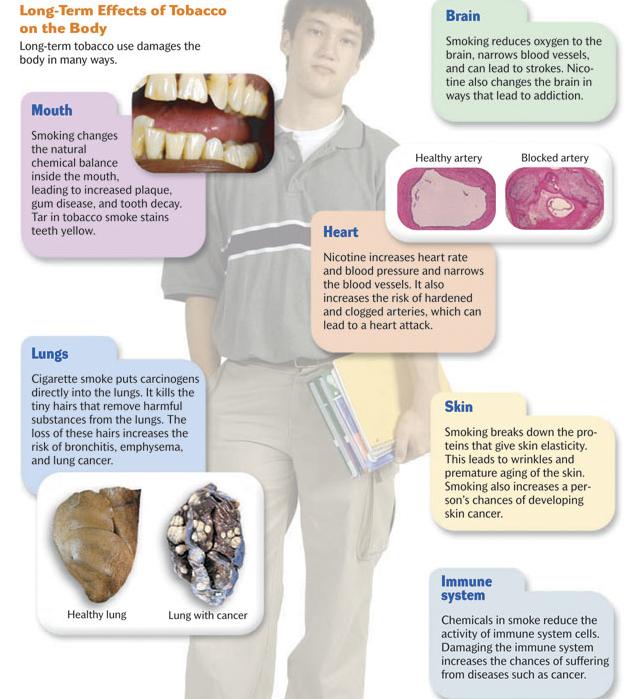 Effects of teenage smoking