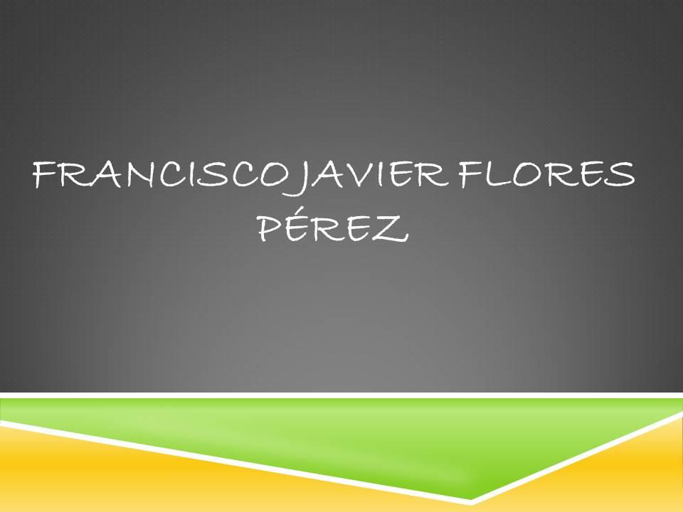 FRANCISCO JAVIER FLORES PEREZ