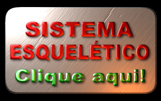SISTEMA ESQUELTICO