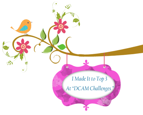 Top Three at DCAM Challenges #5
