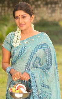 Meera hot in saree