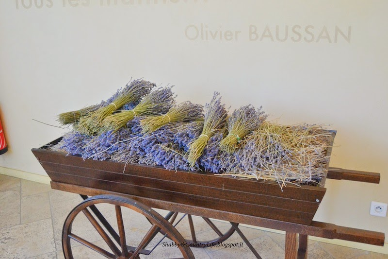 Manosque e Valensole - shabby&countrylife.blogspot.it
