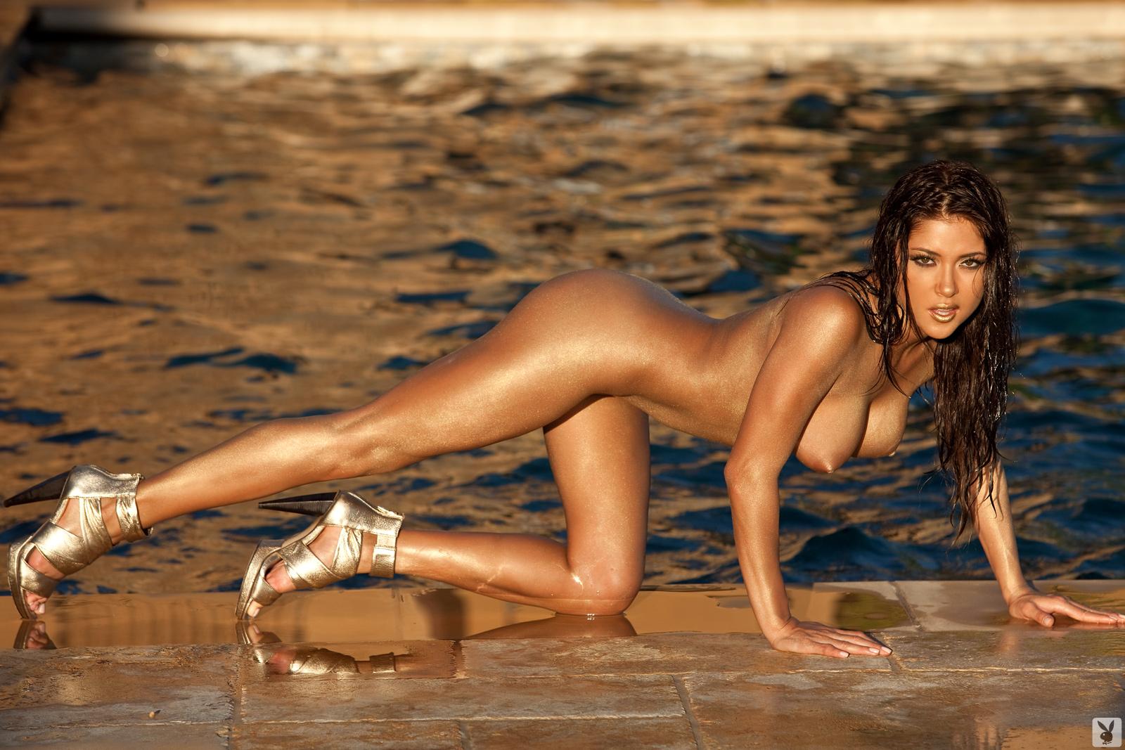 http://2.bp.blogspot.com/-Mlj9Mvcdrps/Ta0ol7Hd1oI/AAAAAAAAC-8/sxbrAsPhWvg/s1600/arianny+celeste+playboy+nude+pics+november+2010+%252816%2529.jpg