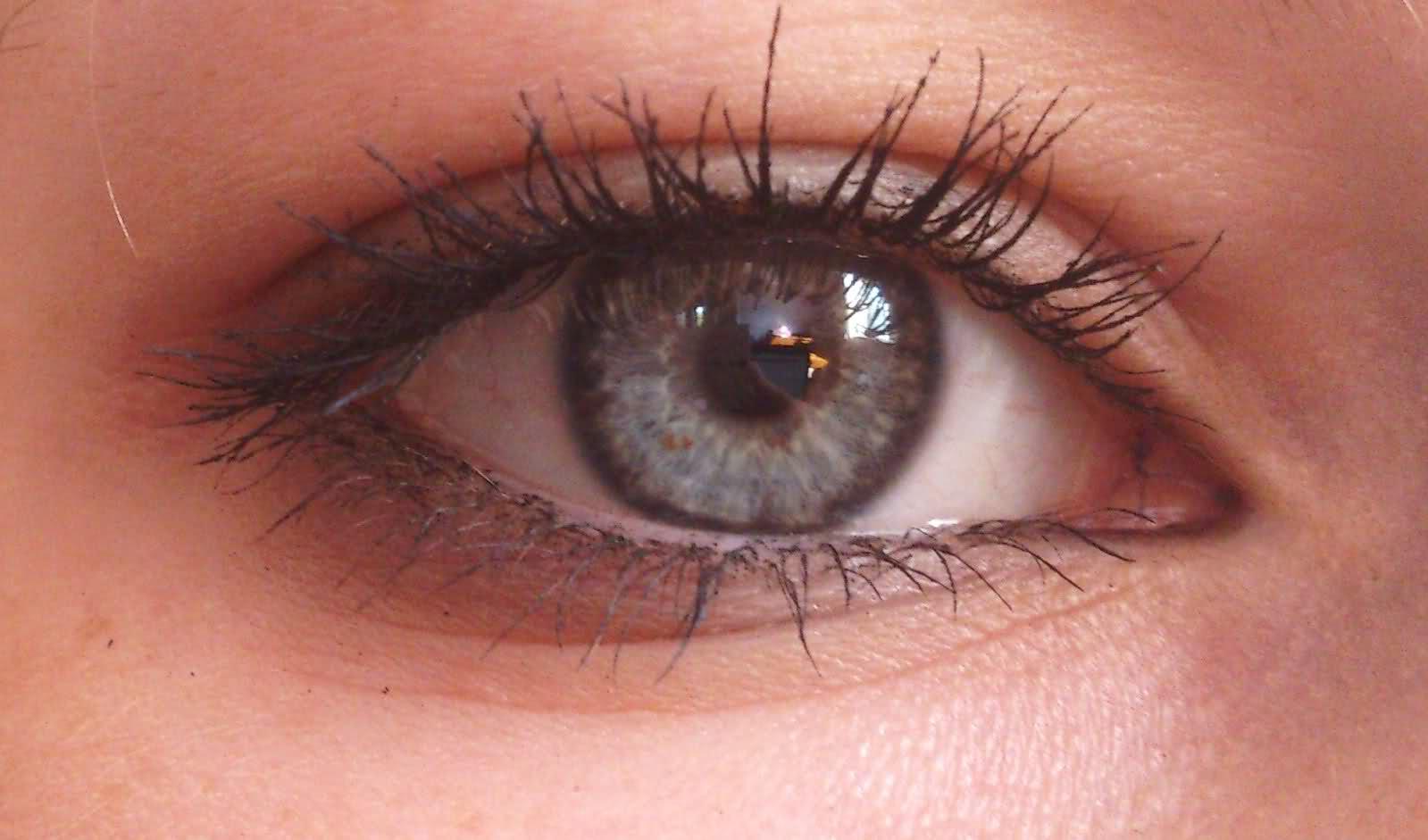 closeups stunning