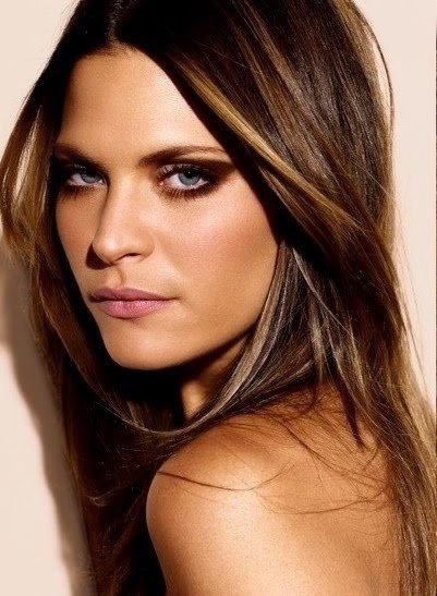 Chestnut Brown Hair with Caramel Highlights