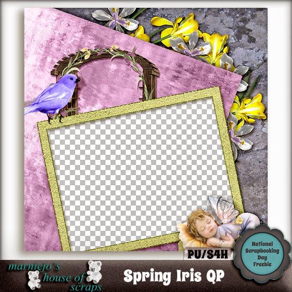 http://2.bp.blogspot.com/-MmaAEkAVAhA/VUXJHHrLBrI/AAAAAAAAE9c/BzgqHCUPG9k/s1600/Spring%2BIris%2BQP%2Bpreview.jpg