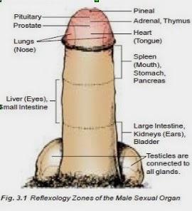 Pênis muito pequeno