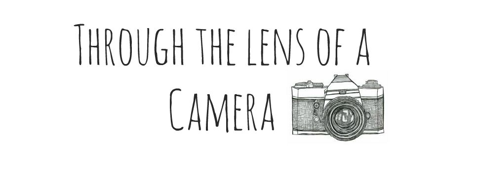Through the lens of a Camera