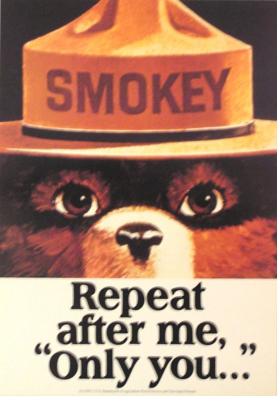 Only You Can Prevent Forest Fires 1944