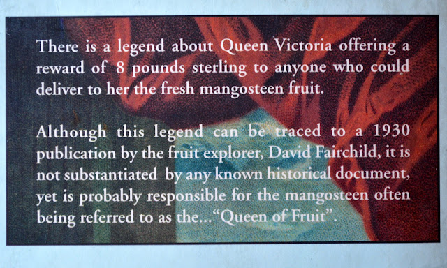 The-Queen-&-Mangosteen-Vivocity-Habourfront-Walk-Singapore