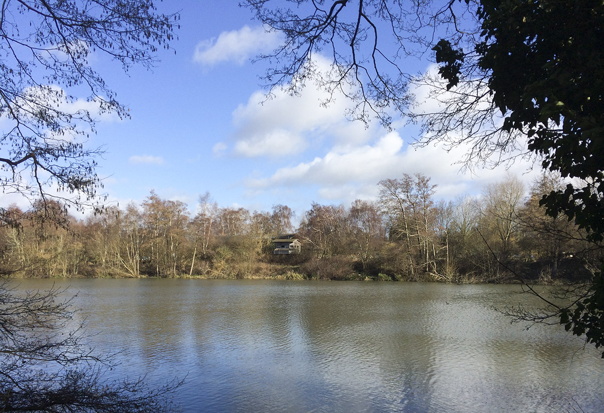 The visitor centre and hide from across the lake.  Sevenoaks Wildlife Reserve, 22 February 2014.