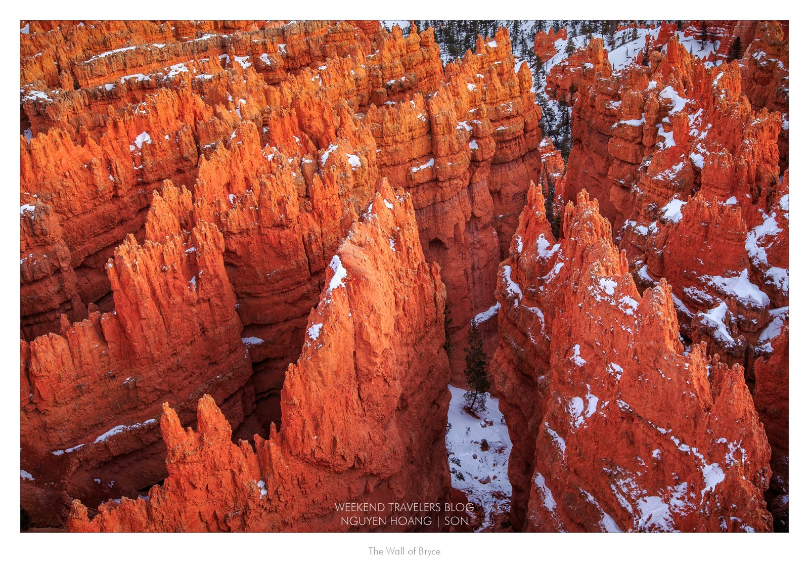 Red Hoodoos at Bryce Canyon