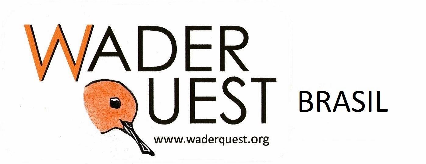 Wader Quest Brasil