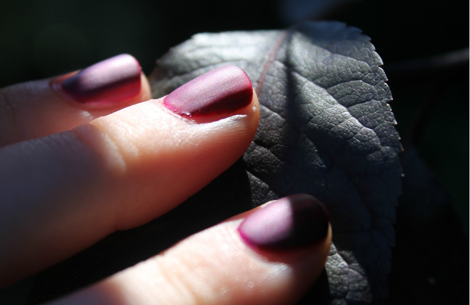 Divine Number 7: Autumn 2013 Nail Inspiration From Fashion Week ...