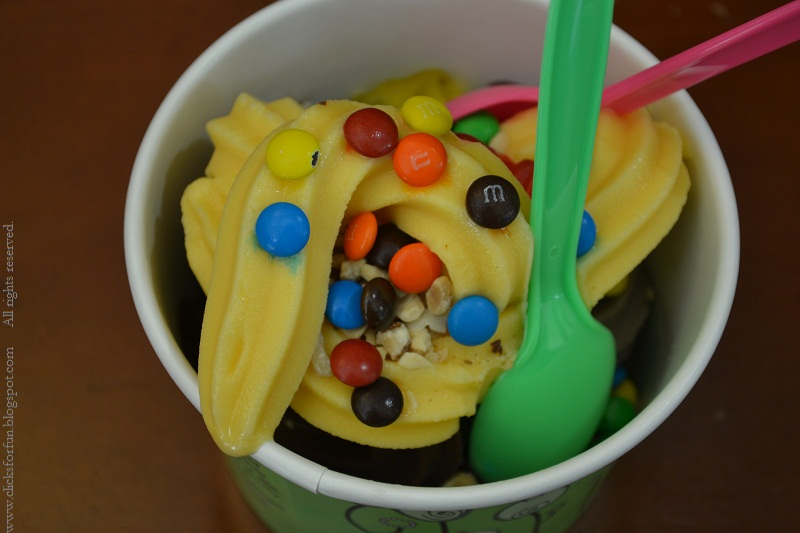 tutti frutti frozen yogurt icecream cookies and cream death by chocolate vanilla toppings gummy bears nuts m and ms