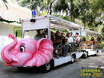 Transportasi keliling kebun binatang gembira loka yogya