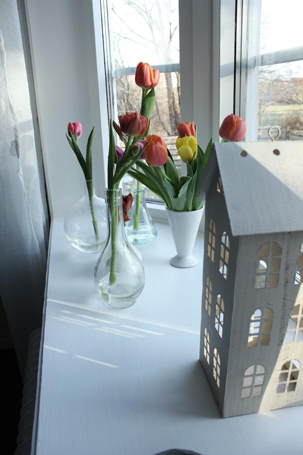 små vaser med tulpaner, glasflaskor med blommor, hus vitt zink