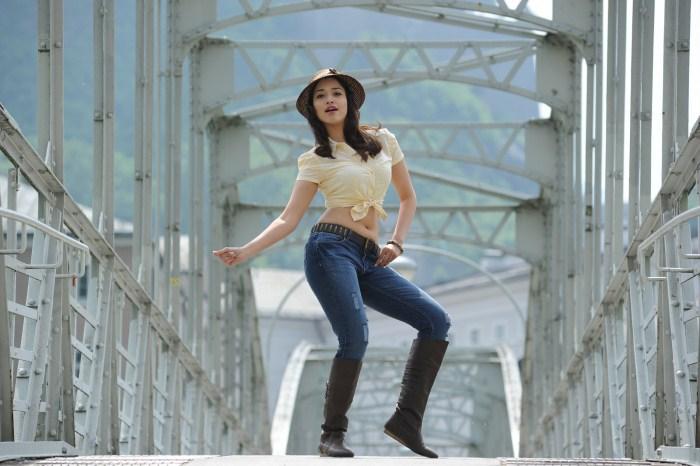 Indian-Tollywood-film-telugu-movie-Allu-Arjun-Tamanna-starring-Badrinath
