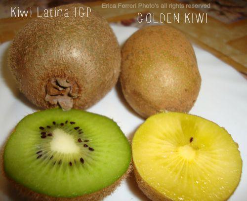 kiwi verde e kiwi giallo - Golden kiwi