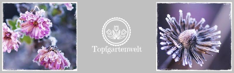 Topfgartenwelt - Gartenblog