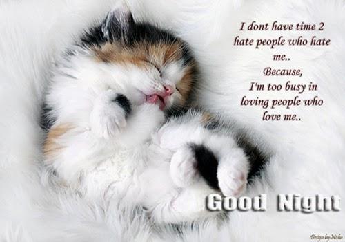 Gatti Cartoline Della Buonanotte Con Gatti